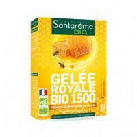 Santarome Bio Gelée Royale 1500 Solution Buvable 20 Ampoules/10ml à SOUMOULOU