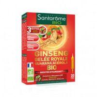 Santarome Bio Ginseng Gelée Royale Guarana Acérola Solution Buvable 20 Ampoules/10ml à SOUMOULOU