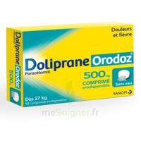 Dolipraneorodoz 500 Mg, Comprimé Orodispersible à SOUMOULOU