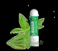 Puressentiel Respiratoire Inhaleur Respiratoire Aux 19 Huiles Essentielles - 1 Ml à SOUMOULOU