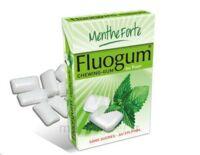 Fluogum Chew Gum Dragée Menthe Forte à SOUMOULOU