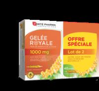 Forte Pharma Gelée Royale 1000 Mg Solution Buvable 2*b/20 Ampoules/10ml à SOUMOULOU