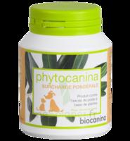Phytocanina Comprimés Minceur B/40 à SOUMOULOU