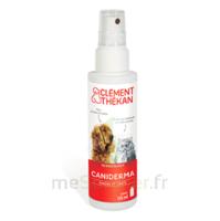 Clément Thékan Caniderma Solution Externe Cicatrisant Spray/125ml à SOUMOULOU