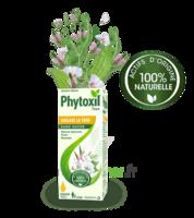 Phytoxil Toux Sans Sucre Sirop Adulte Enfant +2 Ans Fl/120ml à SOUMOULOU